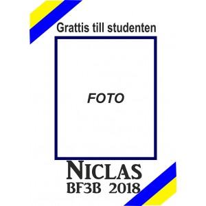 Studentplakat 4