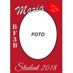 Studentplakat 6